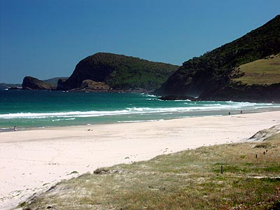 Beach and headland