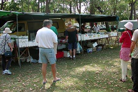 The fruit and vegie stand at the Blackhead markets